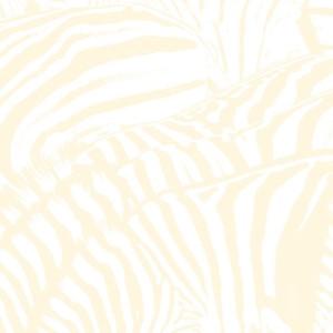 beach house-teen dream album cover