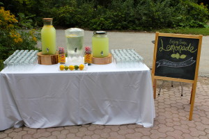 Wedding Lemondae Stand